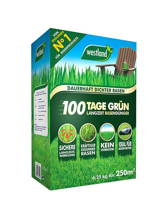Westland Smart Green 4kg Rasensamen und Dünger Neueinsaat Rasen Neuanlage