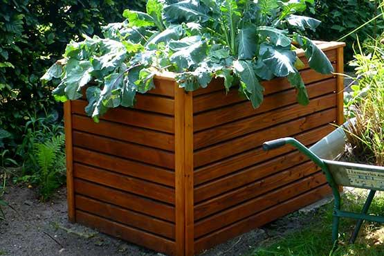 pflanzenwelt gem se kr uter und hochbeet seramis. Black Bedroom Furniture Sets. Home Design Ideas